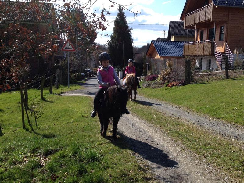 galerie lern und legasthenietraining mit pferden